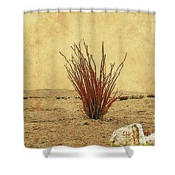 Ocotillo - The Desert Coral Shower Curtain