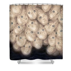 Octo Hatchery Shower Curtain