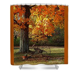 Shower Curtain featuring the drawing October Day by Diane E Berry