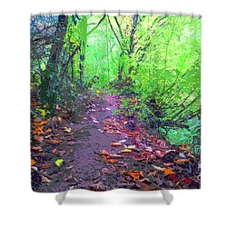October Forest Pathway Shower Curtain