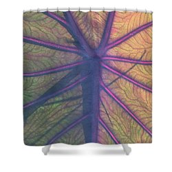 Shower Curtain featuring the photograph October Leaf by Peg Toliver
