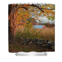 Shower Curtain featuring the photograph October Morning 2016 Square by Bill Wakeley