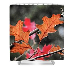 Shower Curtain featuring the photograph October by Peggy Hughes