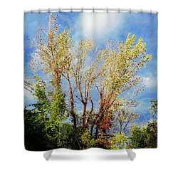 October Sunny Afternoon Shower Curtain