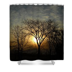 October Sunrise Behind Elm Tree Shower Curtain