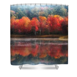 October Trees - Autumn  Shower Curtain by MTBobbins Photography