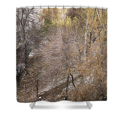 Shower Curtain featuring the photograph October by Vladimir Kholostykh