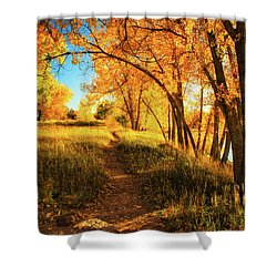 Shower Curtain featuring the photograph October's Light by John De Bord