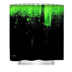 Ode To Absinthe Shower Curtain