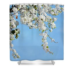 Ode To Spring 2 Shower Curtain