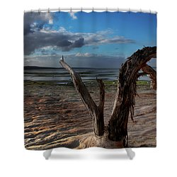 Ode To The Estuary Shower Curtain by Kym Clarke