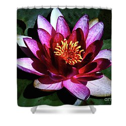 Ode To The Water Lily Shower Curtain