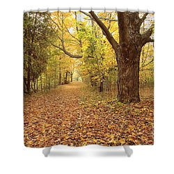 Odiorne Point State Park - Rye New Hampshire Shower Curtain by Erin Paul Donovan