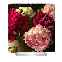 Off Center Peonies Shower Curtain by Gillis Cone