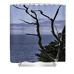 Off Shore Shower Curtain