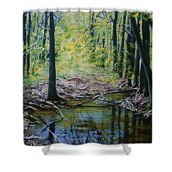 Off The Trail Shower Curtain