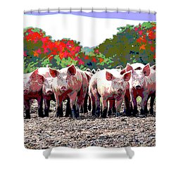 Shower Curtain featuring the mixed media Off To The Market by Charles Shoup