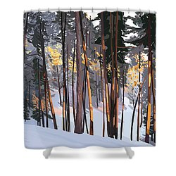 Office View Winter Alpenglow Shower Curtain
