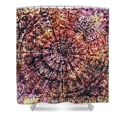 40-offspring While I Was On The Path To Perfection 40 Shower Curtain