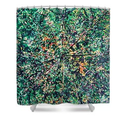 43-offspring While I Was On The Path To Perfection 43 Shower Curtain