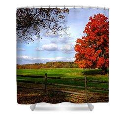 Oh Beautiful Tree Shower Curtain