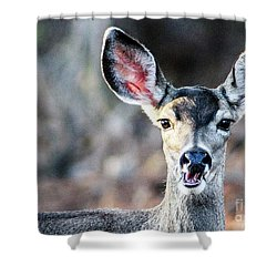 Oh, Deer Shower Curtain