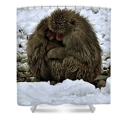 Oh Mummy It's Cold Shower Curtain