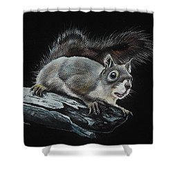 Oh Nuts  Shower Curtain