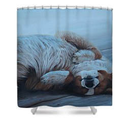 Oh Sweet Sleep Shower Curtain
