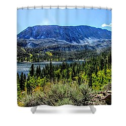 Oh What A View Shower Curtain