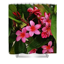 Shower Curtain featuring the photograph Oh What Color by Craig Wood