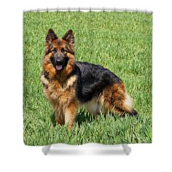 Ohana In Field Shower Curtain