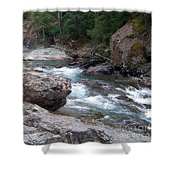 Shower Curtain featuring the photograph Ohanapacosh River by Charles Robinson