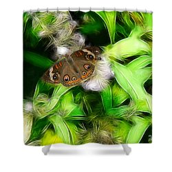 Shower Curtain featuring the photograph Ohio Buckeye by EricaMaxine  Price