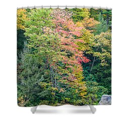 Ohio Pyle Colors - 9709 Shower Curtain by G L Sarti