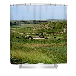 Oil And Cattle Shower Curtain by Keith Stokes