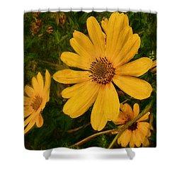 Oil Glaze Wildflowers Shower Curtain