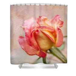 Oil Painted Rose Shower Curtain by Joan Bertucci