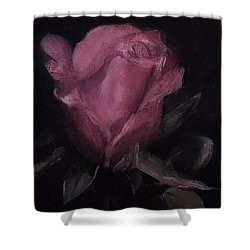 Oil Rose Painting Shower Curtain