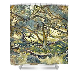 Oilve Grove Marmari Beach Shower Curtain