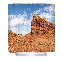 Ojitos De Los Gatos - New Mexico Shower Curtain by Brian Harig