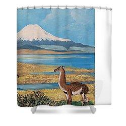 Ojos Del Salado Volcano Shower Curtain