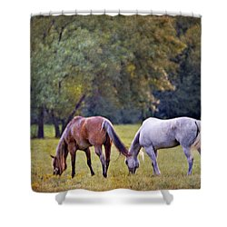 Ok Horse Ranch_2a Shower Curtain
