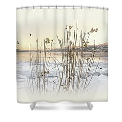 Shower Curtain featuring the photograph Okanagan Glod by John Poon