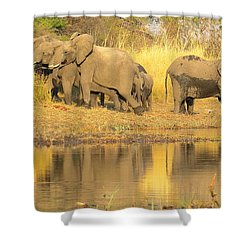 Okavango Scramble Shower Curtain