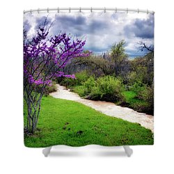 Oklahoma Spring Storm Shower Curtain by Tamyra Ayles