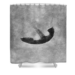 Old Vintage Anchor Shower Curtain