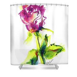 Old Blush - Rose Shower Curtain