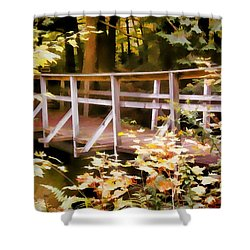 Old Bridge In The Woods In Color Shower Curtain