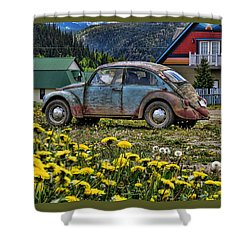 Old Bug Shower Curtain